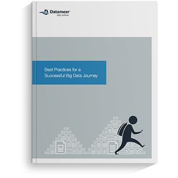 Ebook: Best Practices for a Big Data Journey