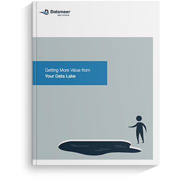 Ebook: Getting More Value From Your Data Lake