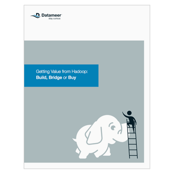 Ebook: Getting Value from Hadoop: Build, Bridge or Buy