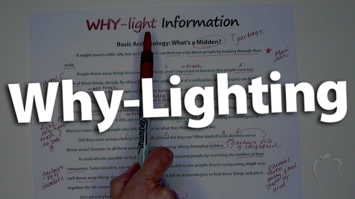 'Go Beyond Highlighting -- Expect Why-Lighting'
