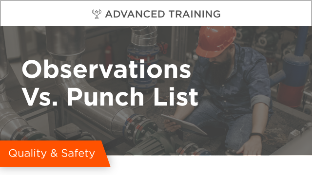 Observations vs. Punch List