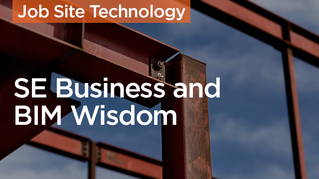 The Profit: SE Business and BIM Wisdom