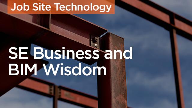 The Profit: SE Business and BIM Wisdom