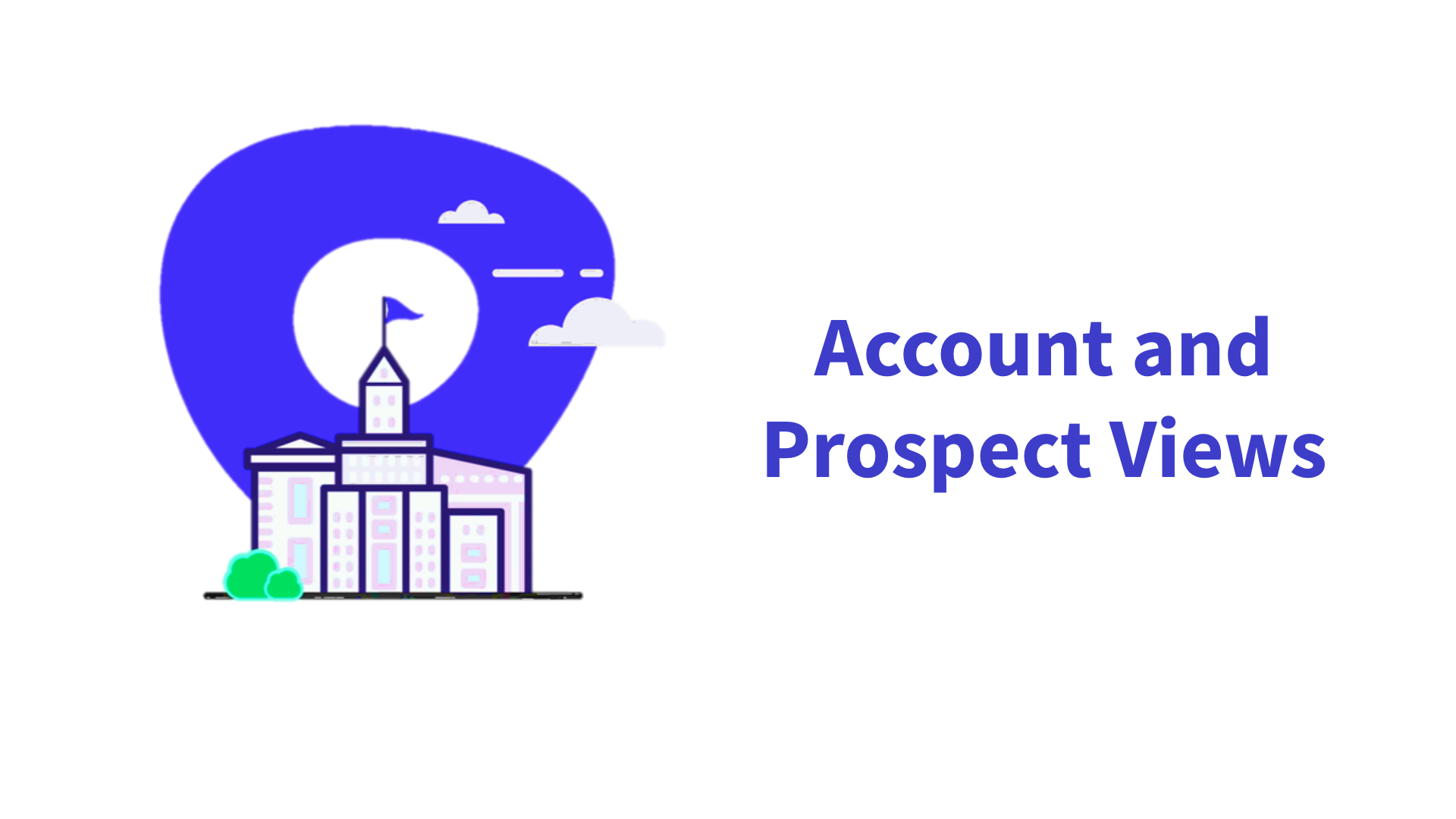 Account and Prospect Views