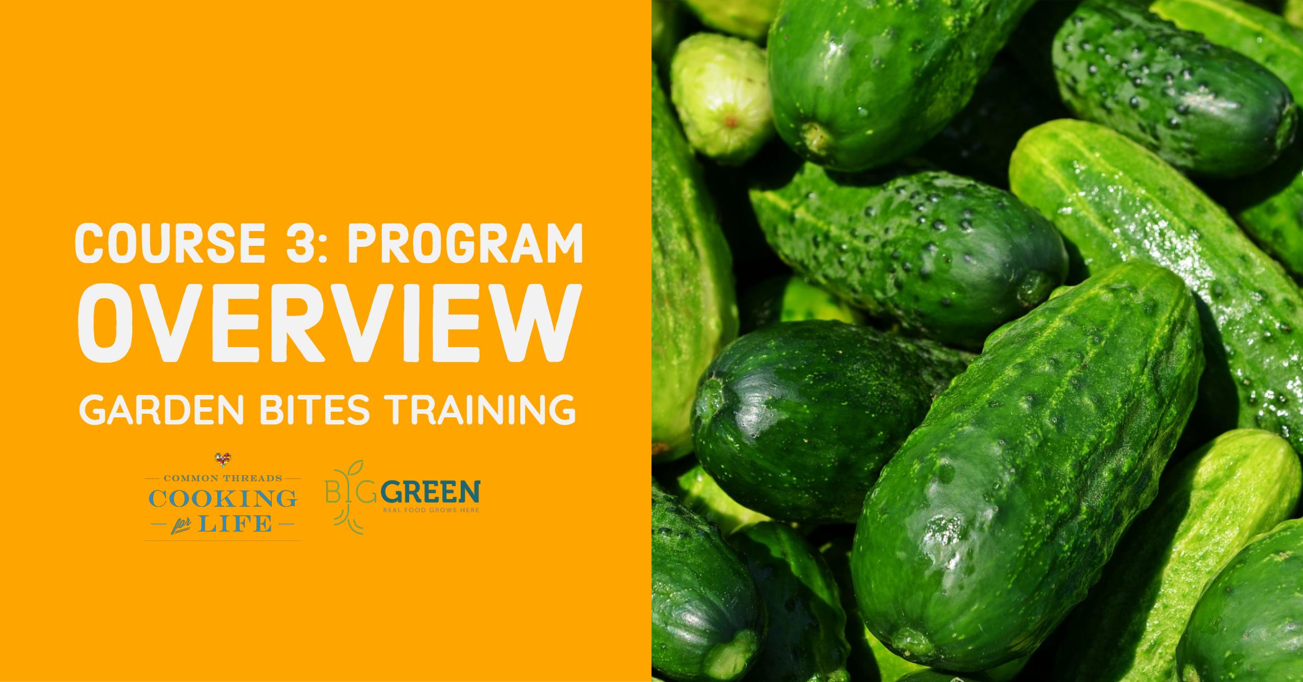 Garden Bites Training for CT: Program Overview & Structures