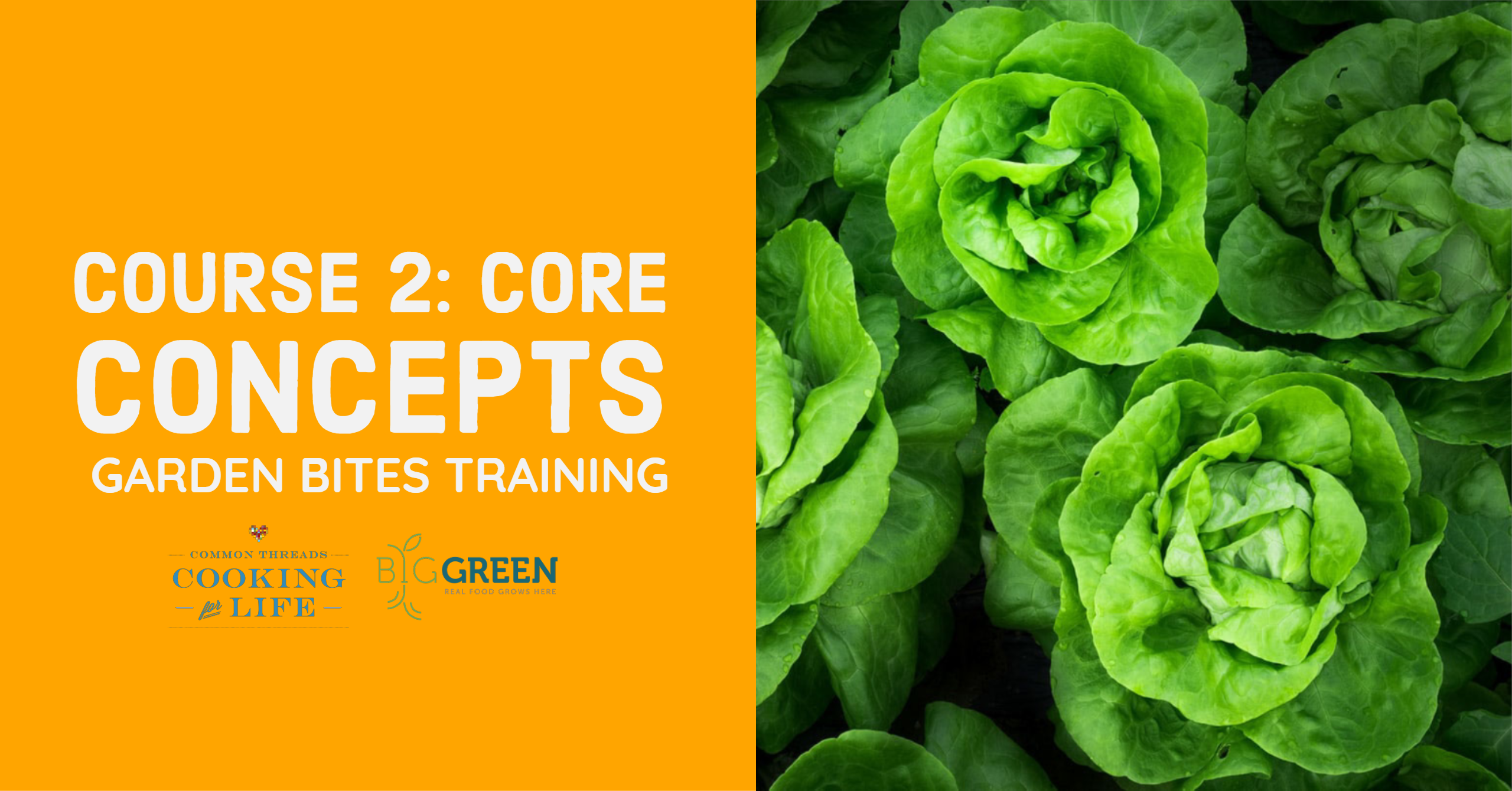 Garden Bites Training for CT: Core Concepts