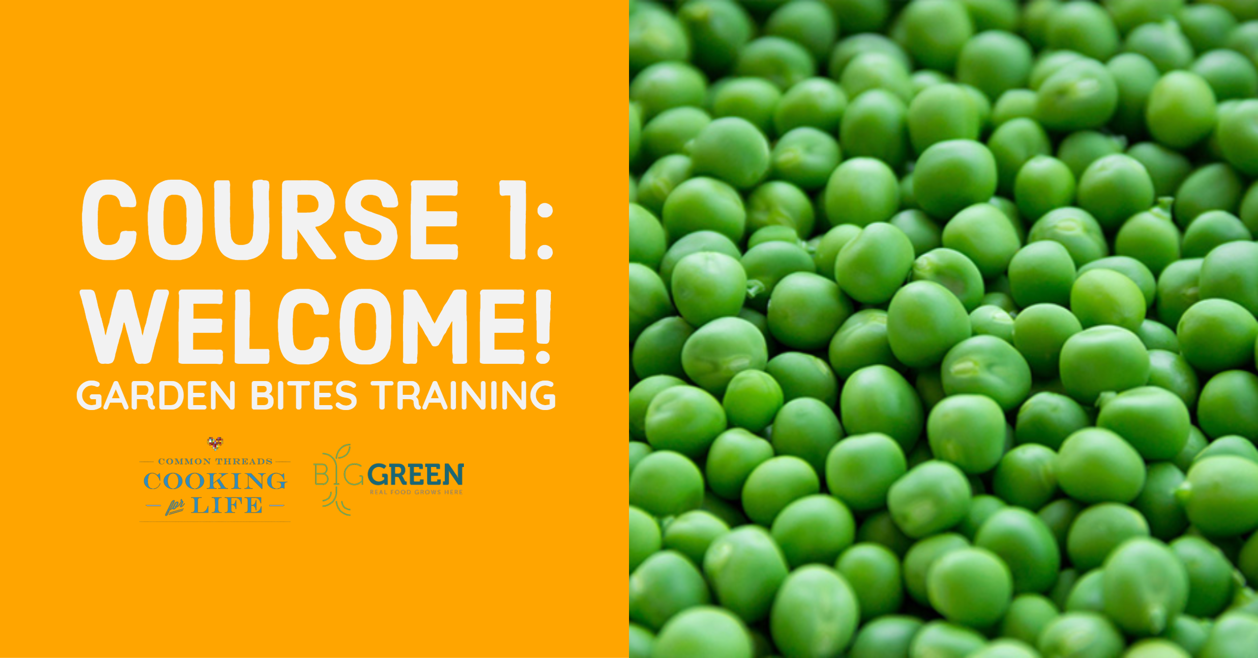 Garden Bites Training for CT: Welcome!