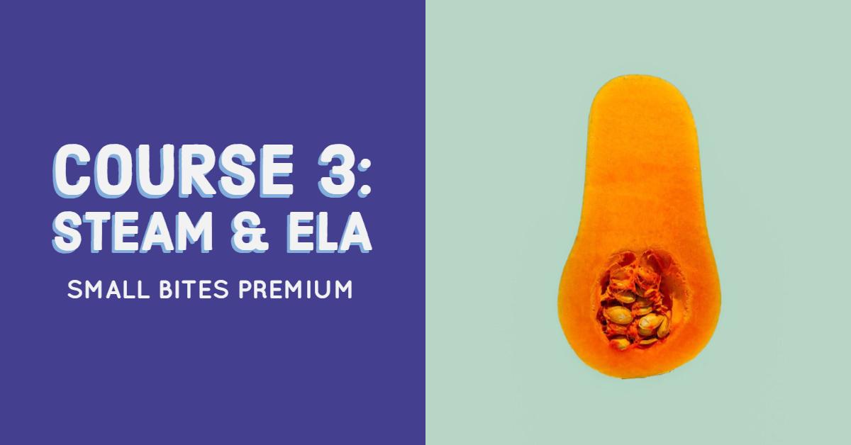 Small Bites Premium Training Course 3: STEAM & ELA