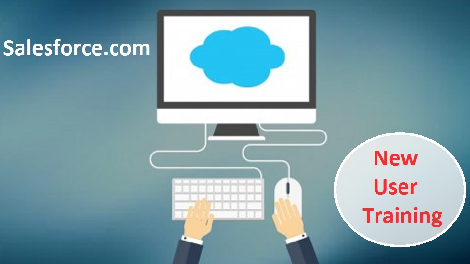 Salesforce New User Training