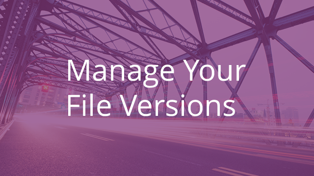 Manage Your File Versions
