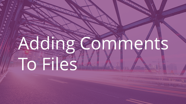 Adding Comments to Files