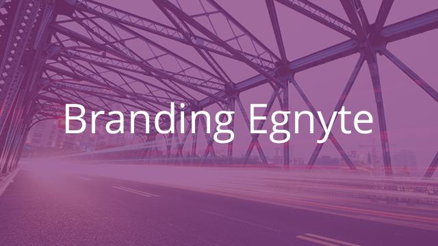 Branding Egnyte