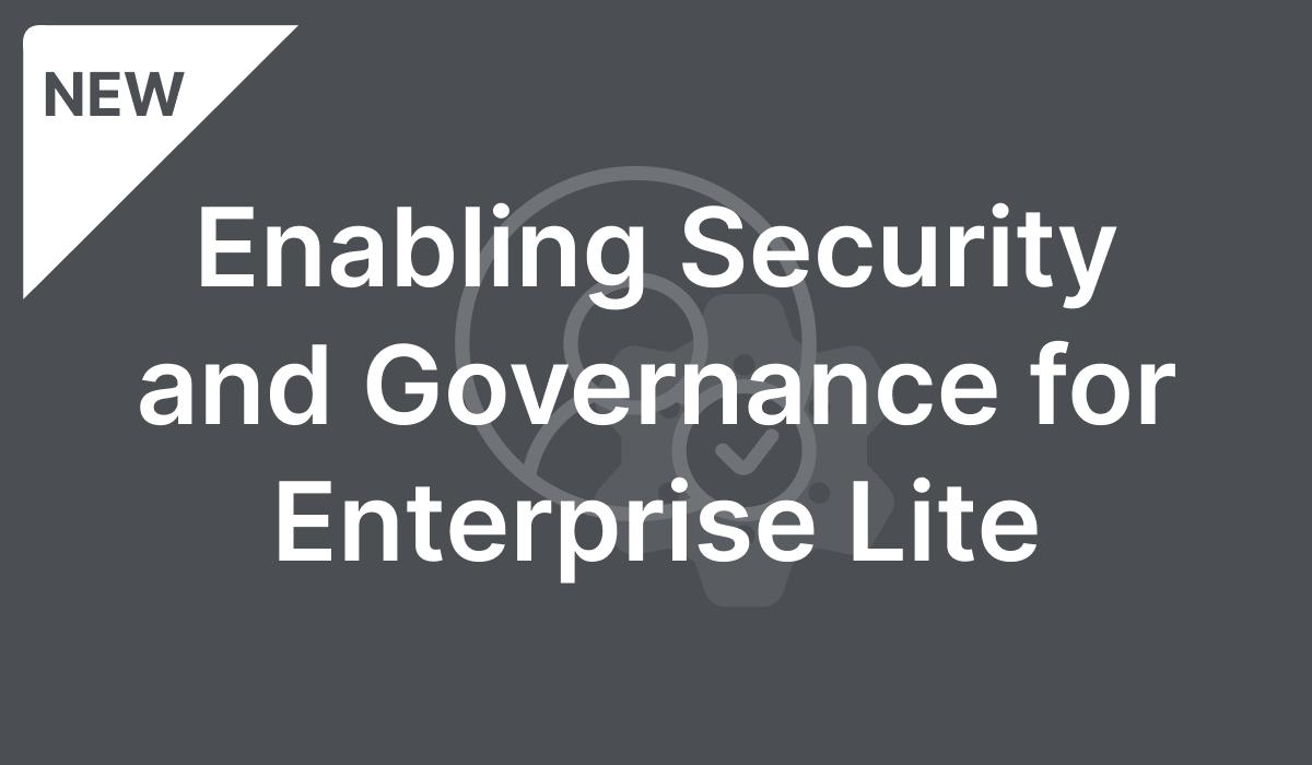 Enabling Security and Governance for Enterprise Lite