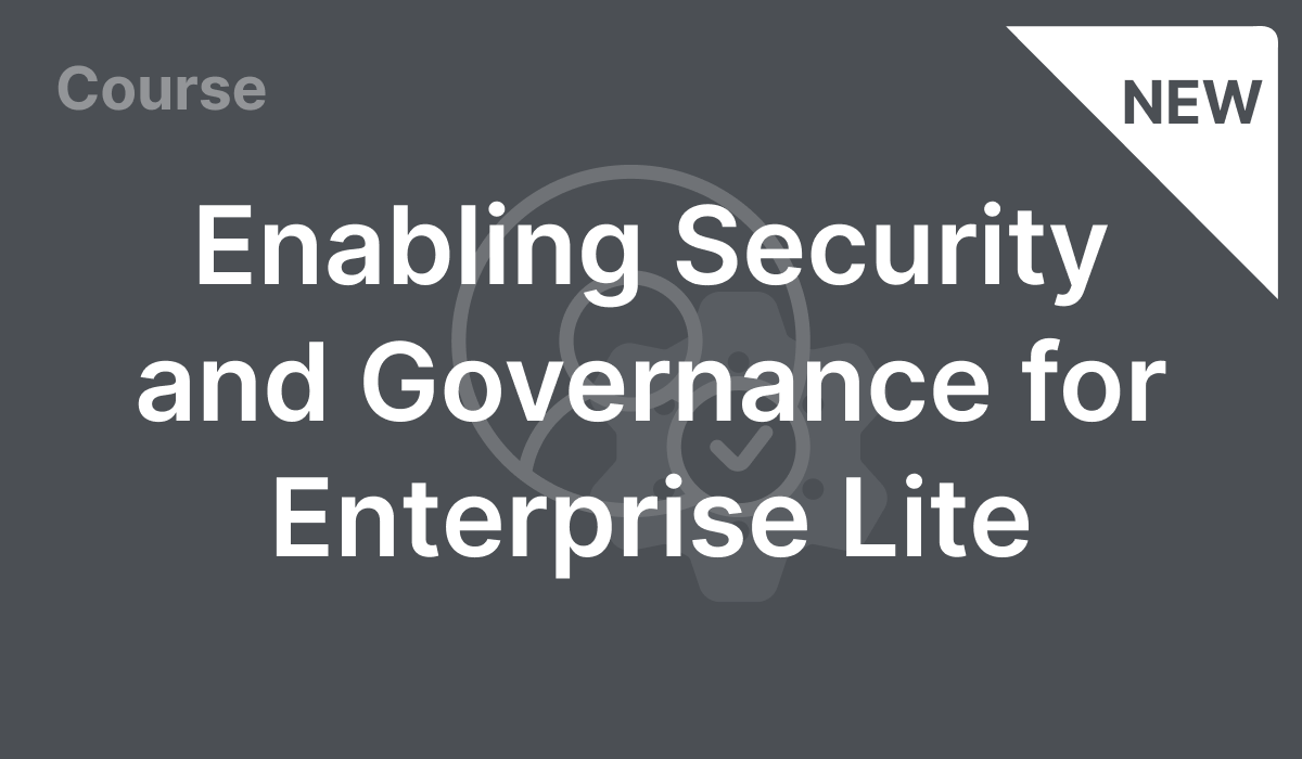 Enabling Security and Governance for Enterprise Lite