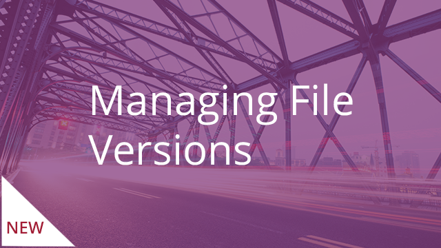 Managing File Versions