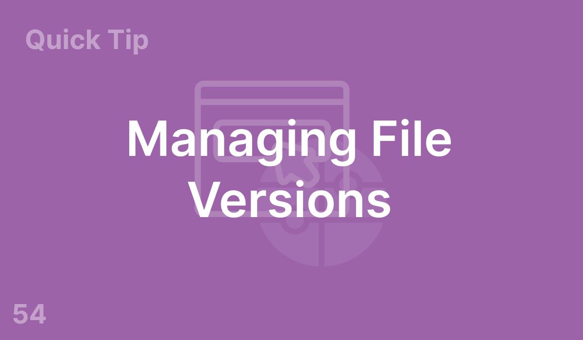 Managing File Versions (#54)