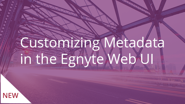 Customizing Metadata in the Egnyte Web UI