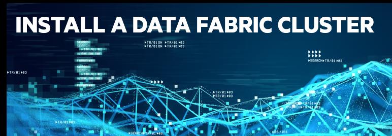 Install a Data Fabric Cluster (v6) - ADM 200