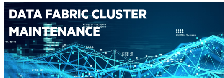Data Fabric Cluster Maintenance (v6) - ADM 203