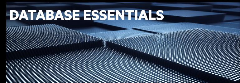 HPE Data Fabric Database Essentials