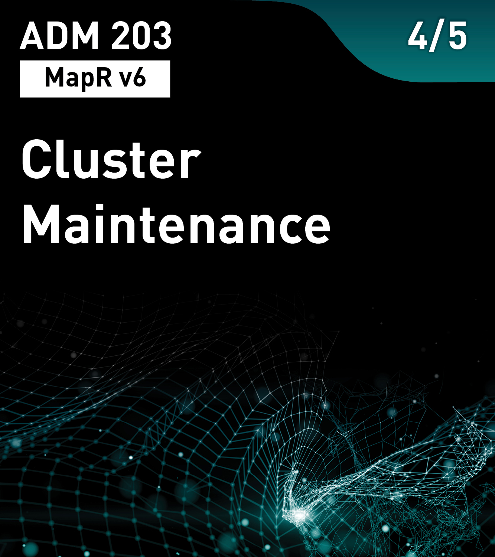 Cluster Maintenance (MapR v6)