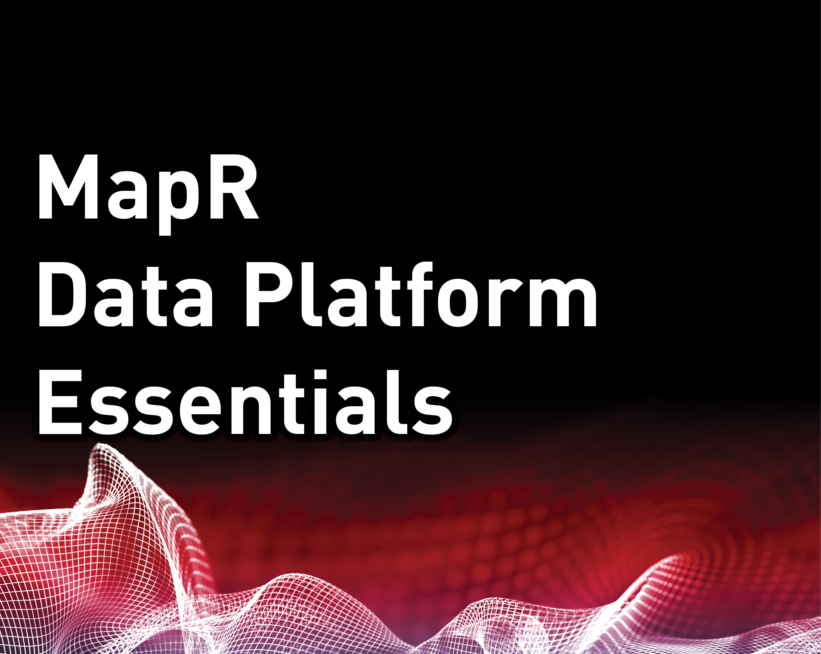 MapR Data Platform Essentials