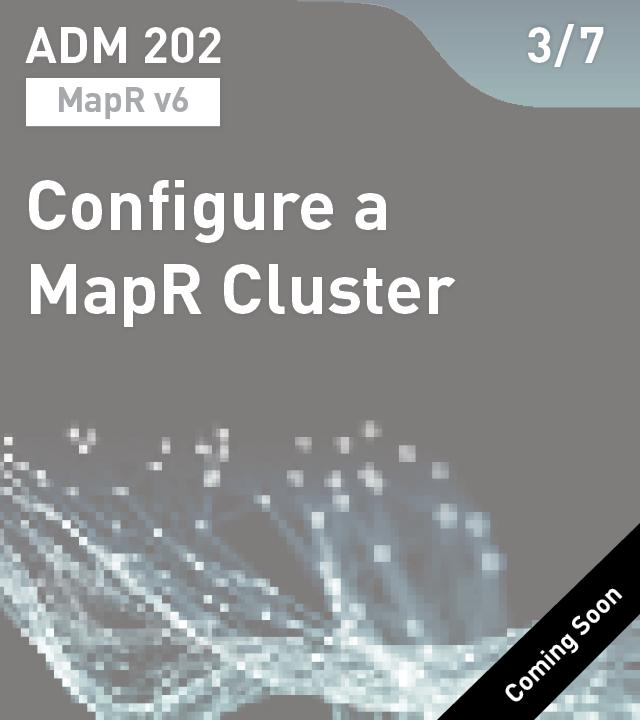 ADM 202 - Configure a MapR Cluster (MapR v6)