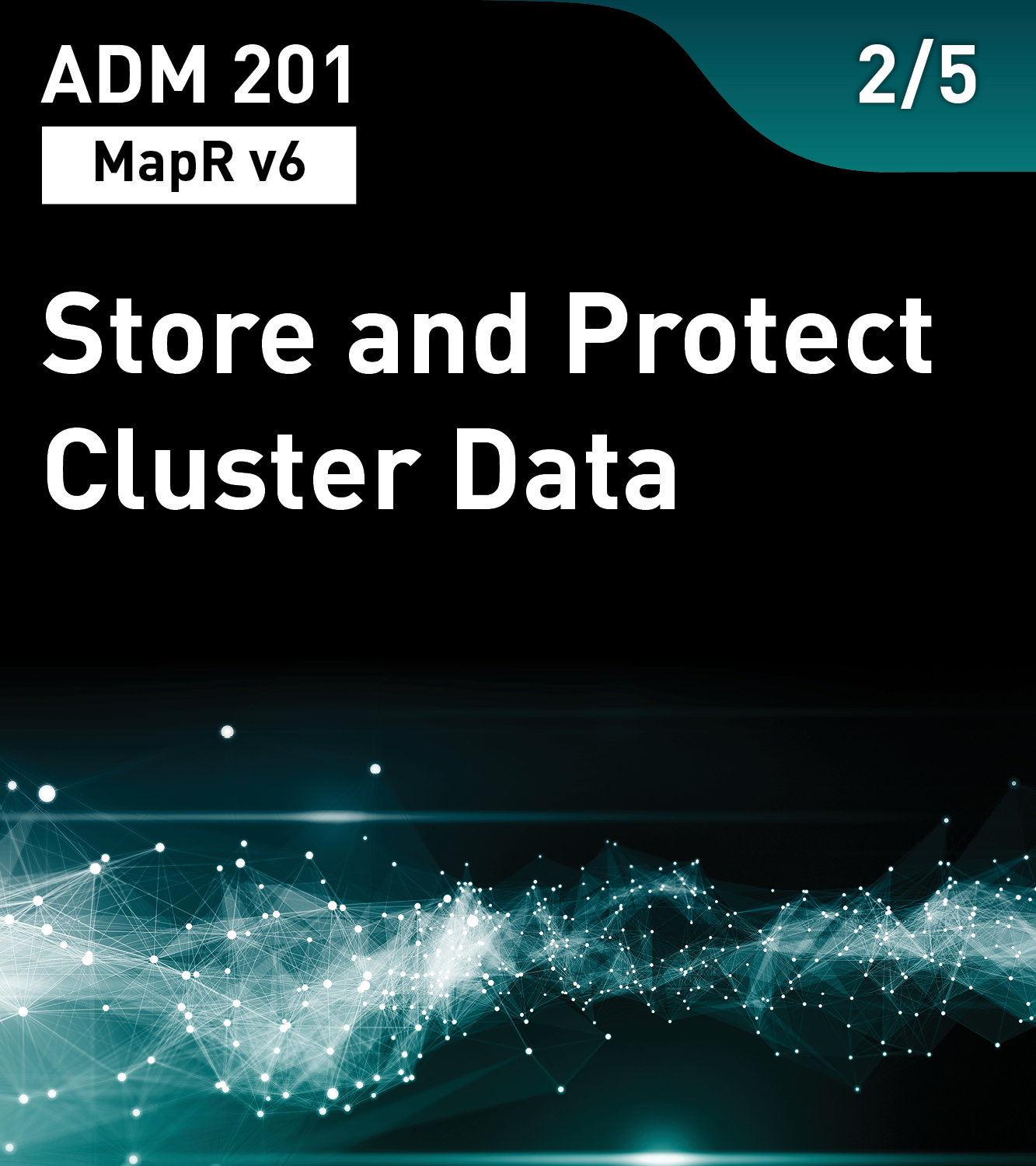 ADM 201 - Store and Protect Cluster Data (MapR v6)