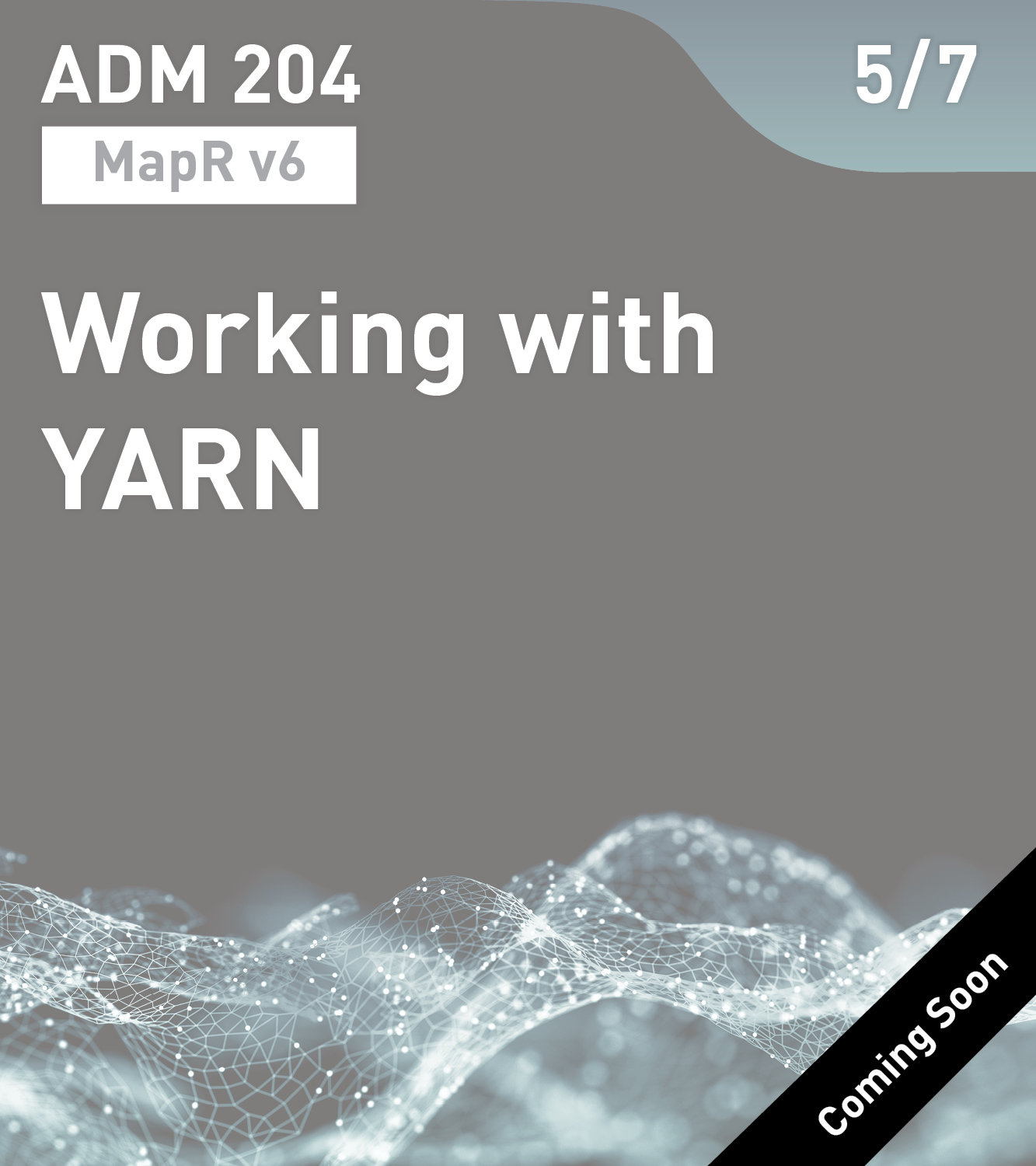 ADM 204 - Working with YARN (MapR v6)