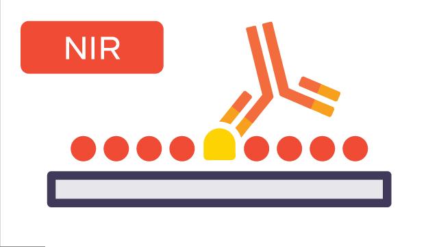 NIR: Blocking the Membrane