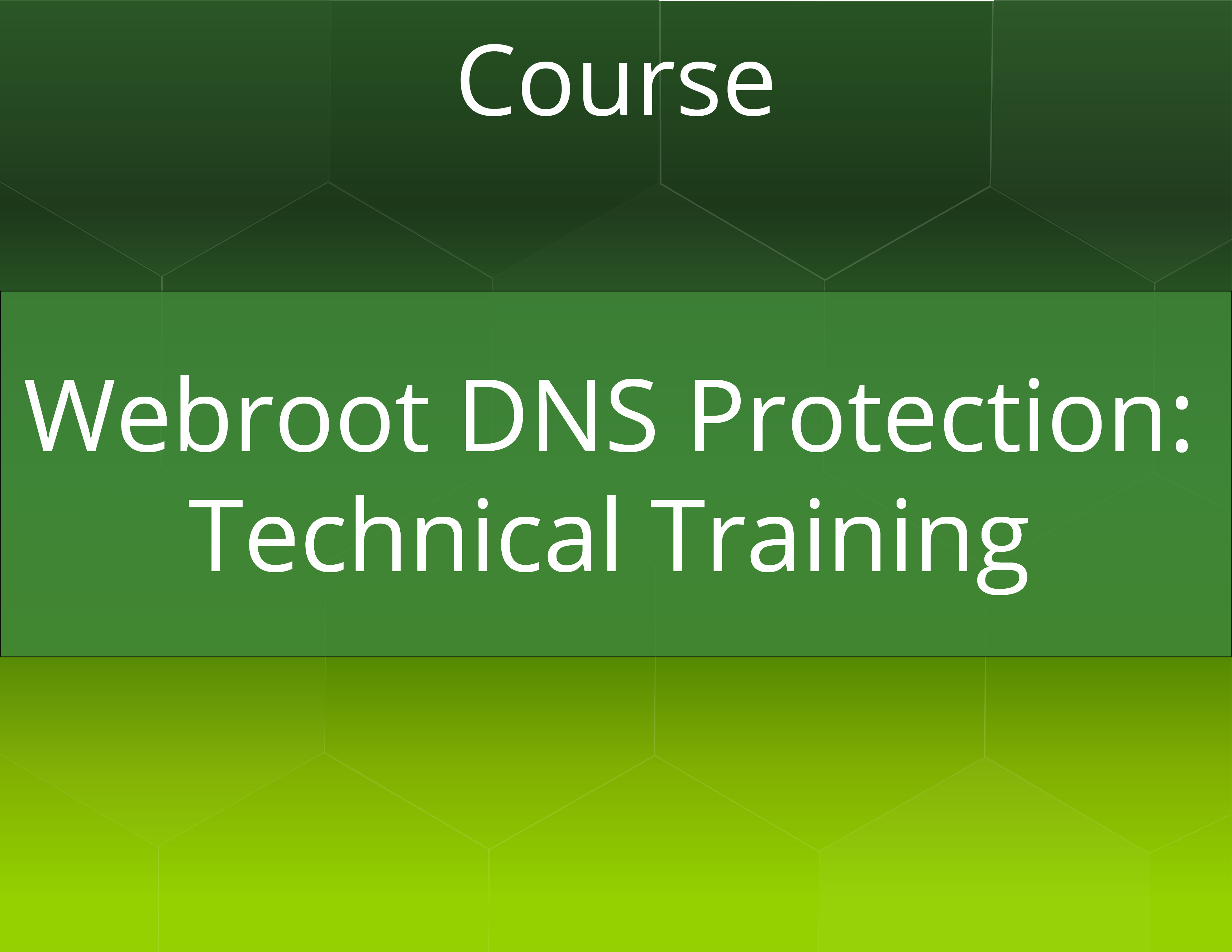 Webroot SecureAnywhere DNS Protection Technical Training