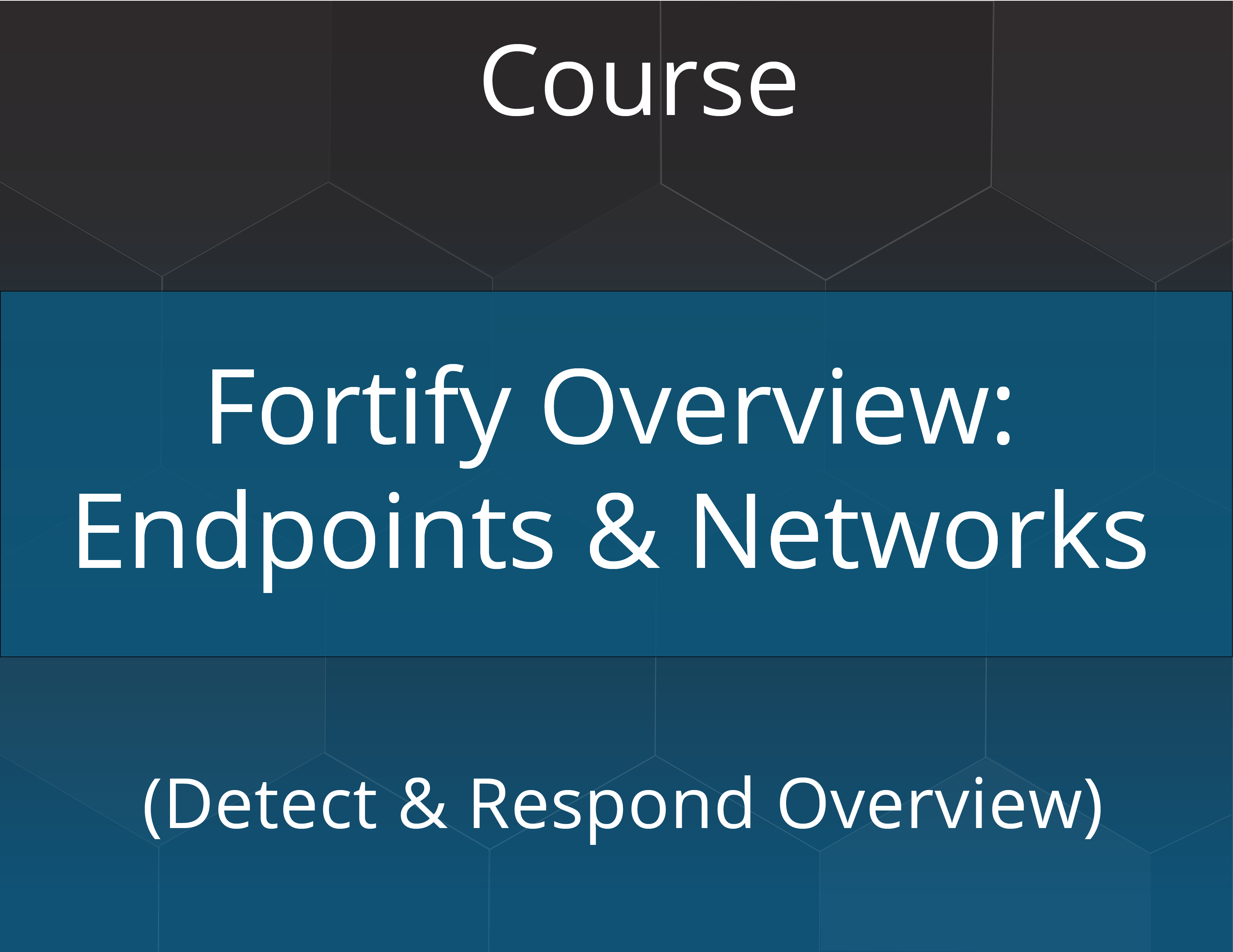 Fortify Overview: Endpoints & Networks