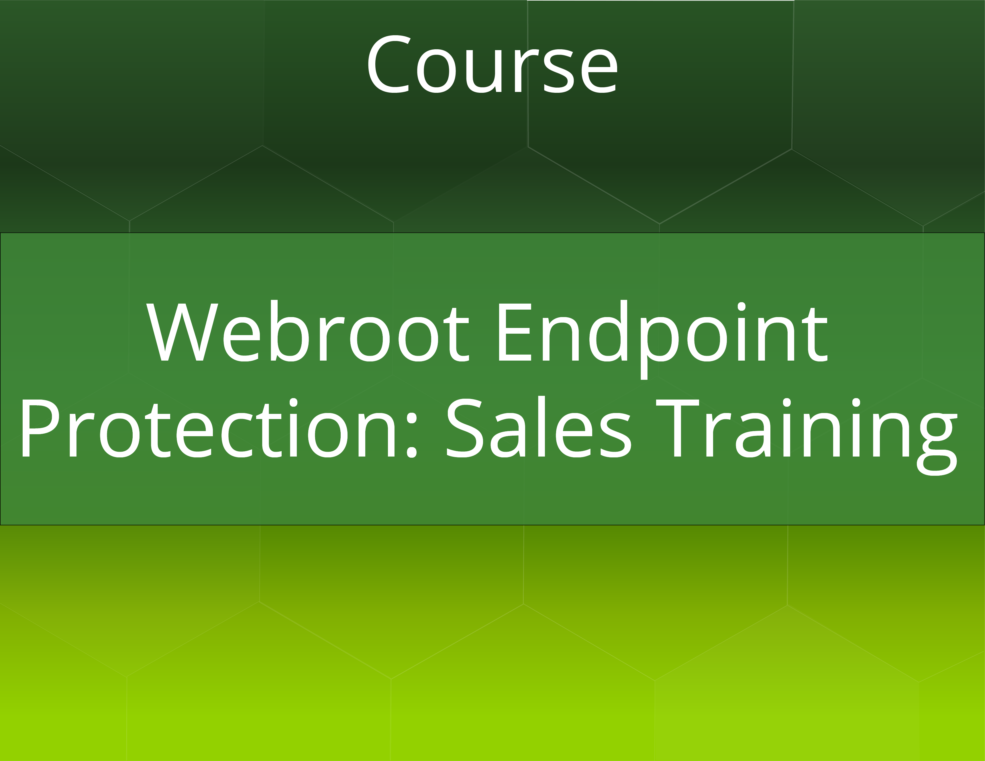 Webroot Endpoint Protection Sales Training