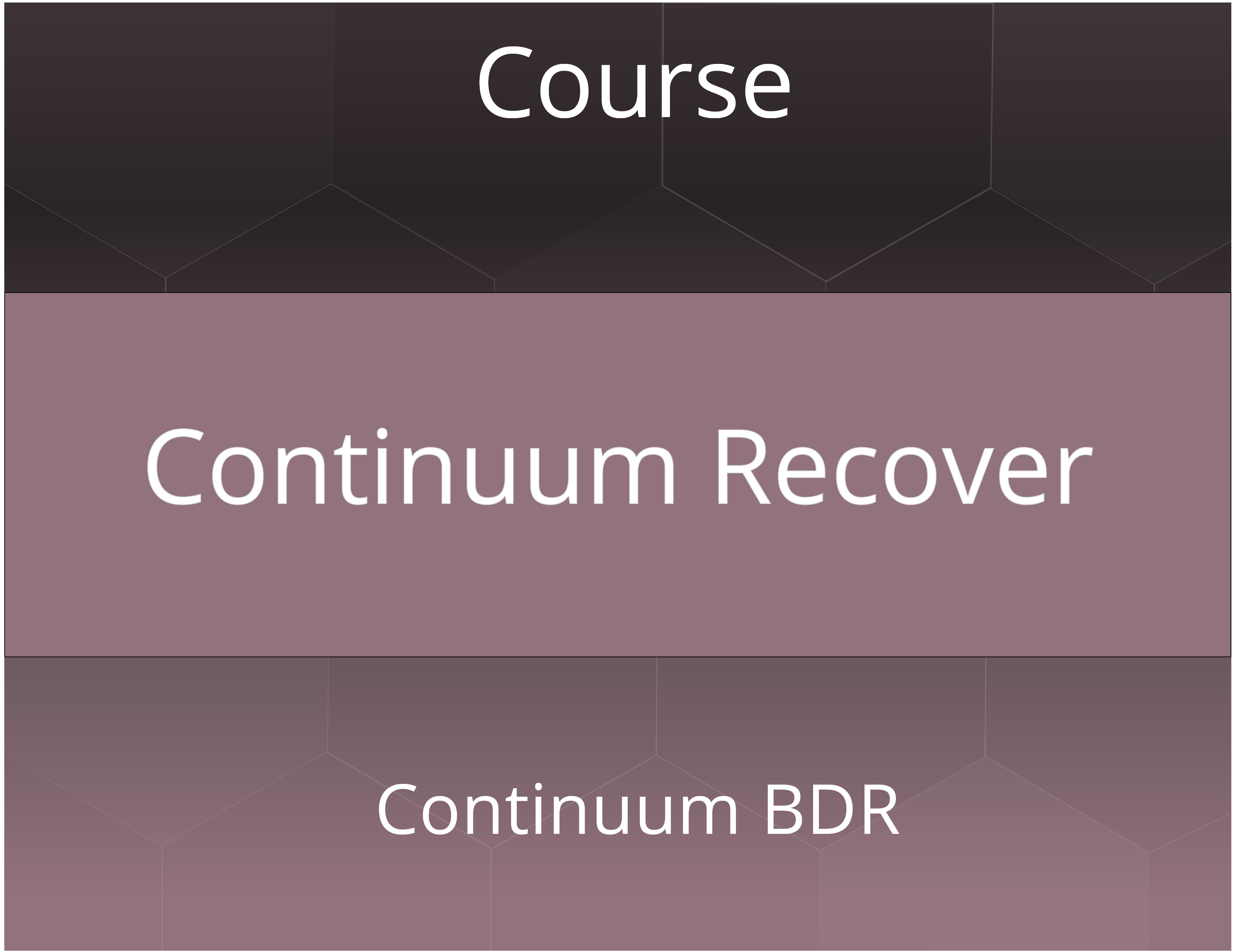 Continuum Recover