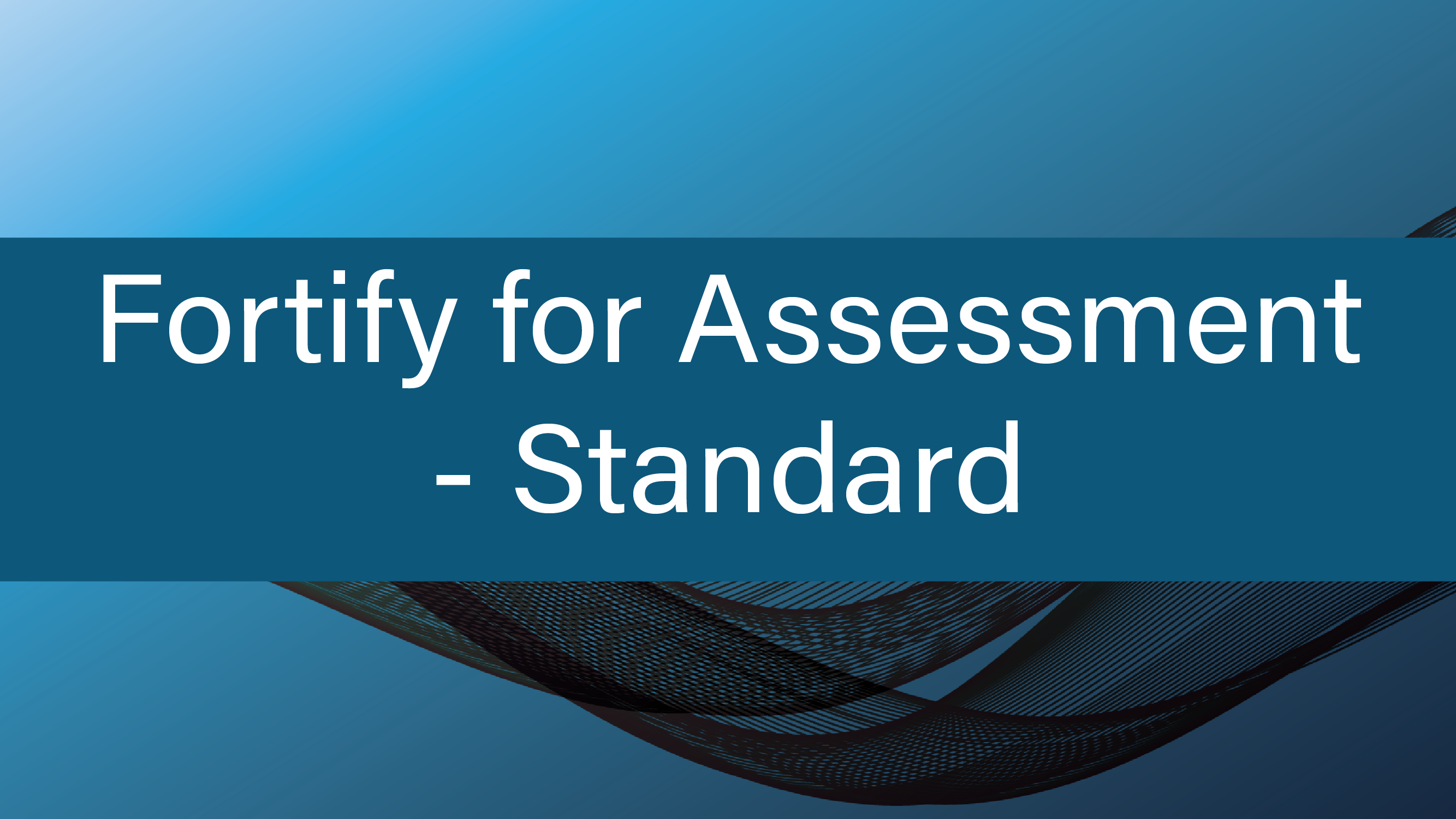 Fortify for Assessment - Standard
