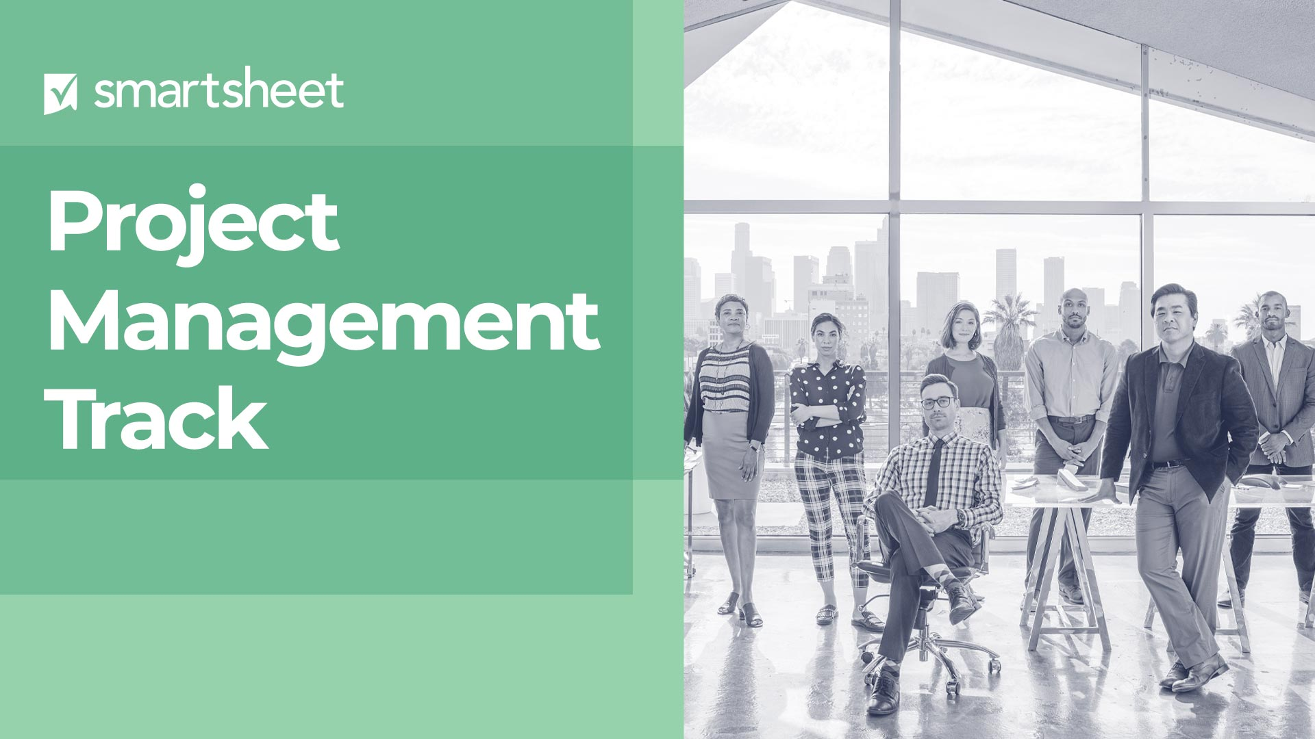 Instructions for Navigating the Project Management Track