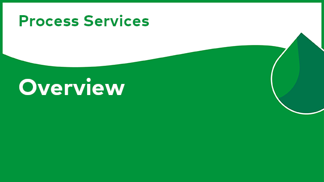 Process Services: Overview