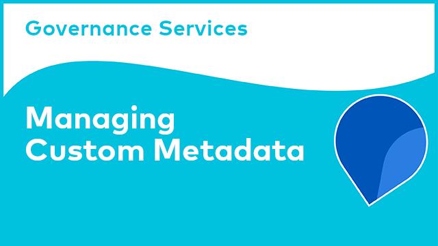 Governance Services: Managing Custom Metadata