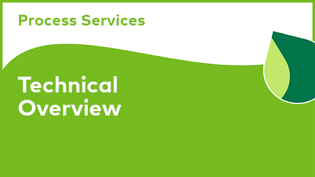 Process Services: Technical Overview