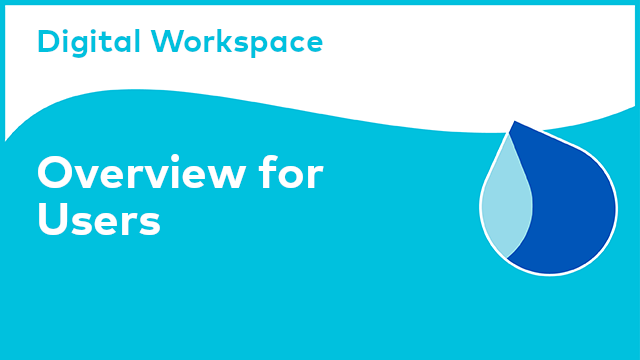 Digital Workspace: Overview for Users