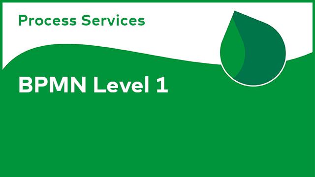 Process Services: BPMN Level 1