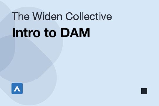 Intro to DAM