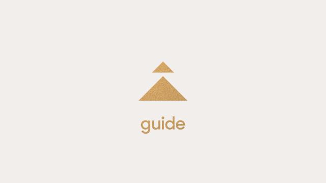 VILT: Zendesk Guide, II