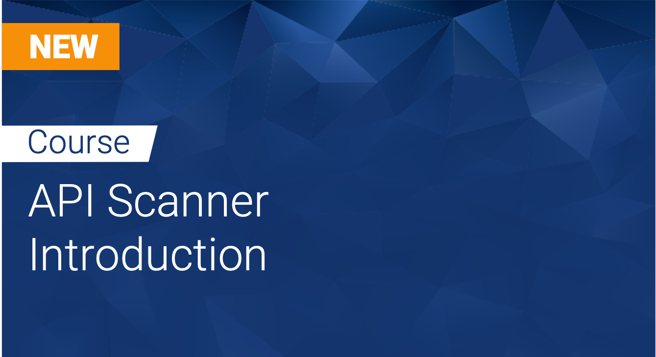 Tinfoil API Scanner: Introduction