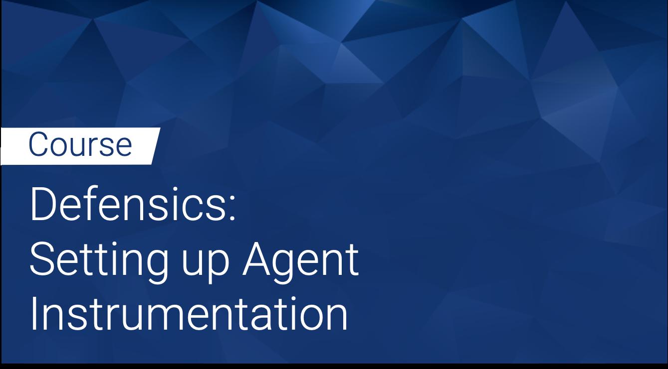 Defensics: Setting up Agent Instrumentation