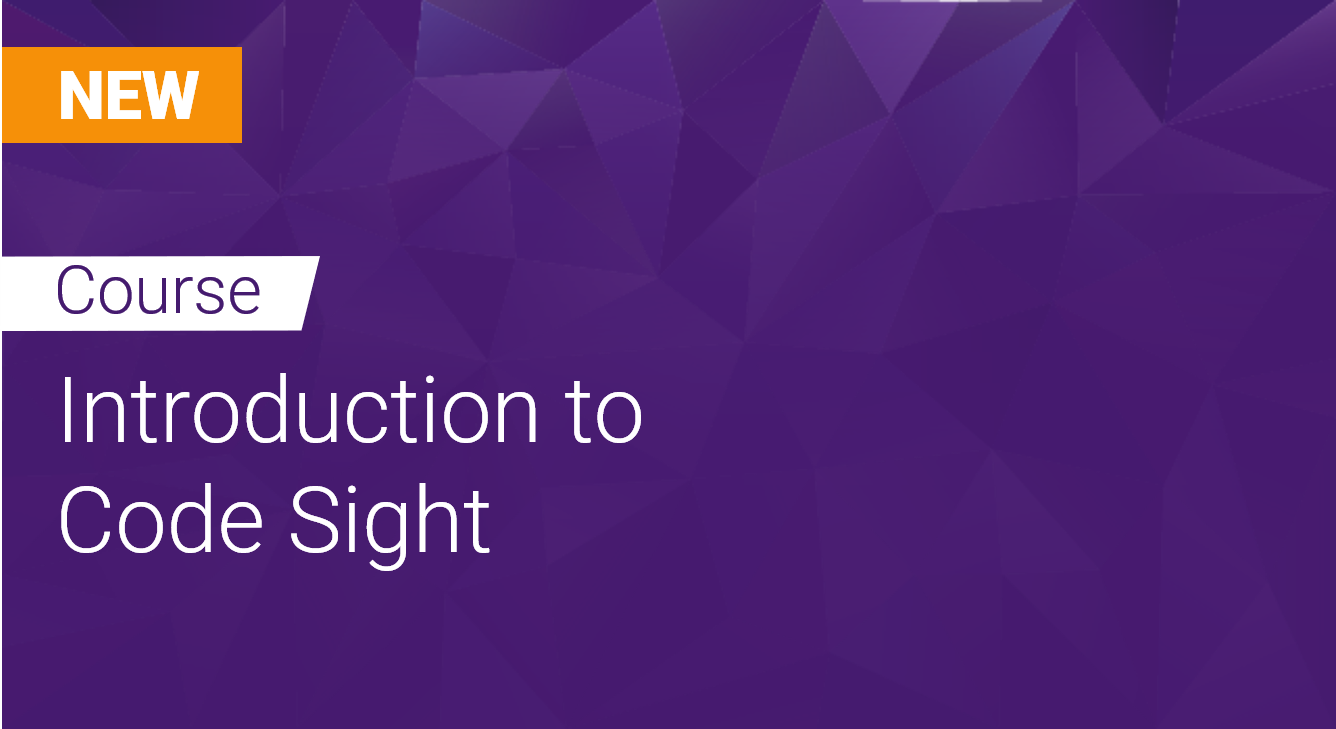 Introduction to Code Sight
