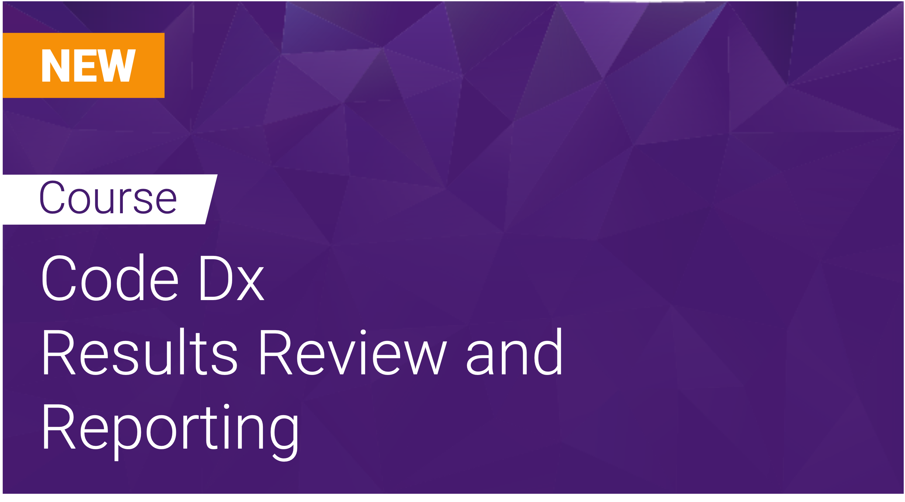 Code Dx: Results Review and Reporting