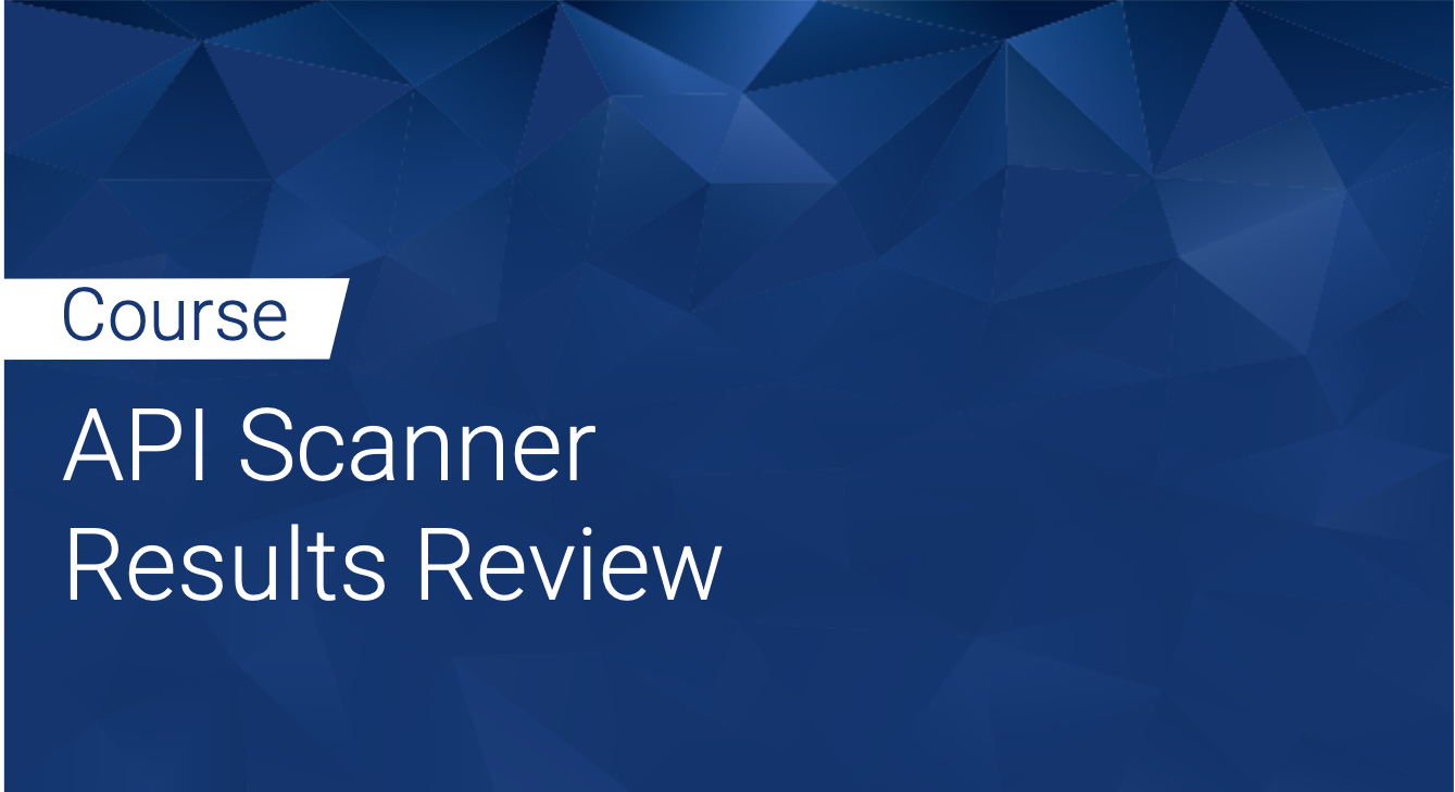 Tinfoil API Scanner: Results Review