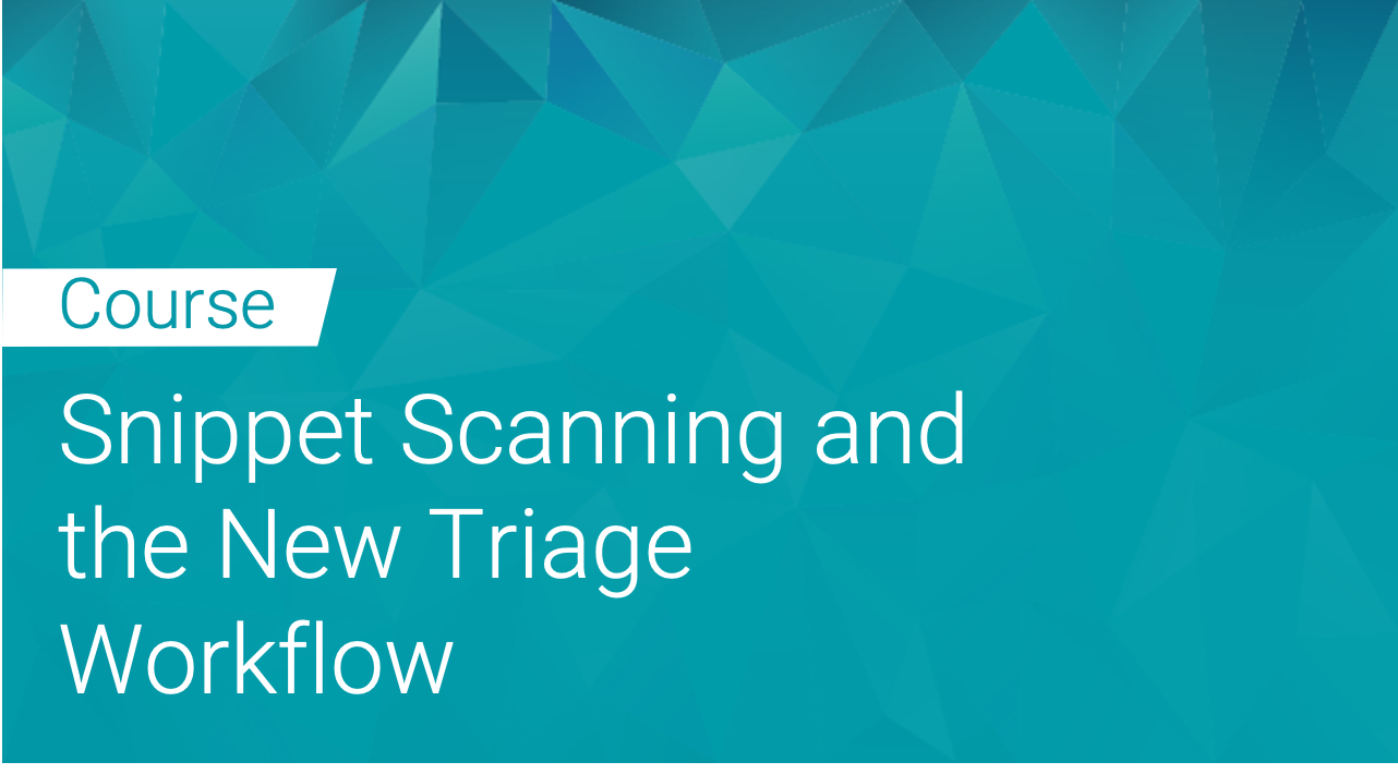 Black Duck: Snippet Scanning and New Triage Workflow