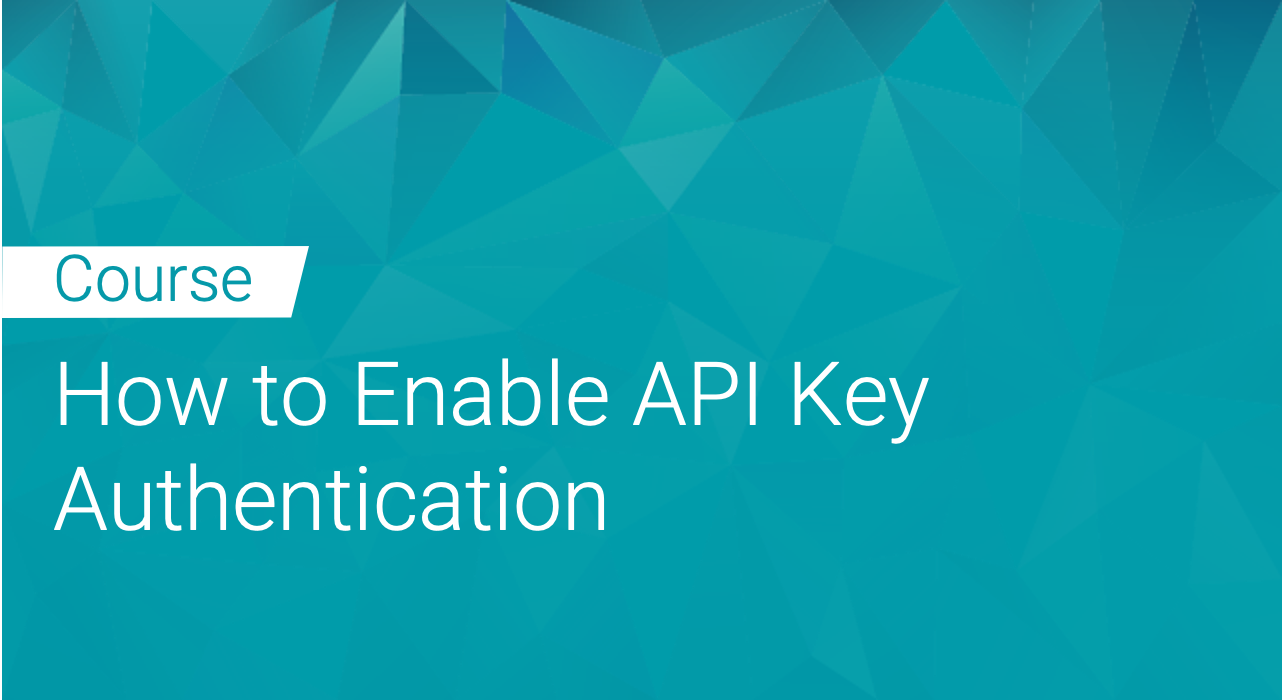 Black Duck Binary Analysis: How to Enable API Key Authentication